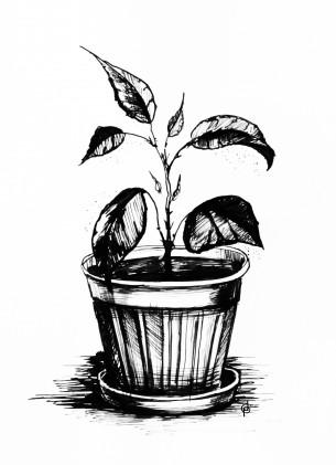 Как сделать из фото рисунок Эффект карандаша акварели
