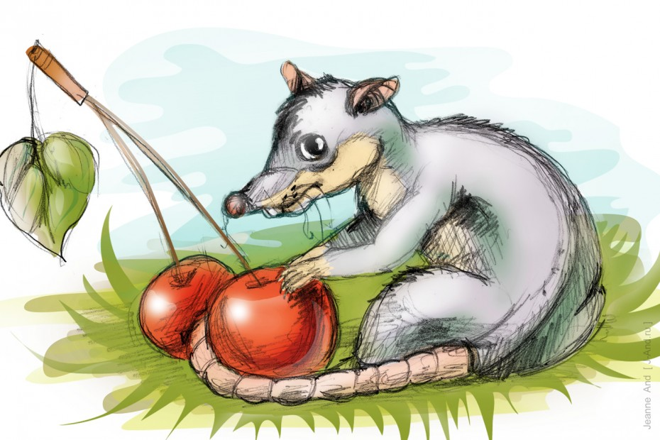 Мышь3